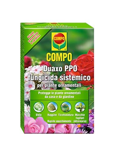 Compo Duaxo, Fungicida Sistémico especialmente diseñado para la Protección de Plantas Ornamentales para el hogar y jardín, 100 Ml, 4.5x7.5x12 cm