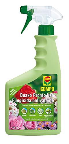 Compo Duaxo, Fungicida Sistémico para la Protección de Plantas Ornamentales para Hogar y Jardín, 750 Ml, 5x8.5x13 cm