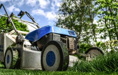 Cómo Convertir un Terreno Baldío en un Jardín
