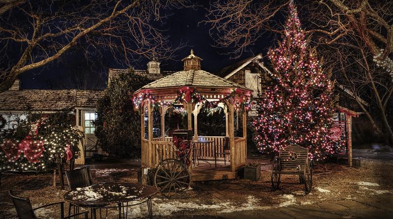 Cómo Decorar el Jardín para Navidad