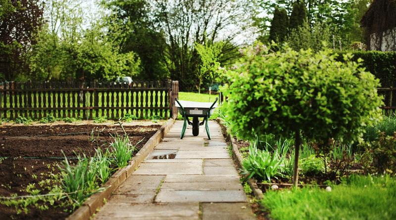 Cómo Renovar el Jardín de la Casa
