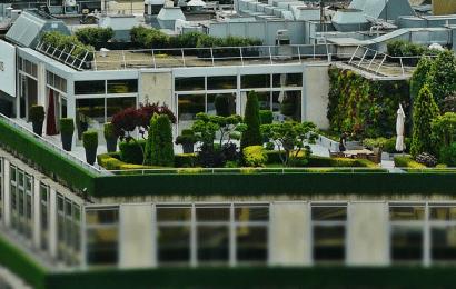 Diseñar una Terraza en la Ciudad: Ideas y Consejos