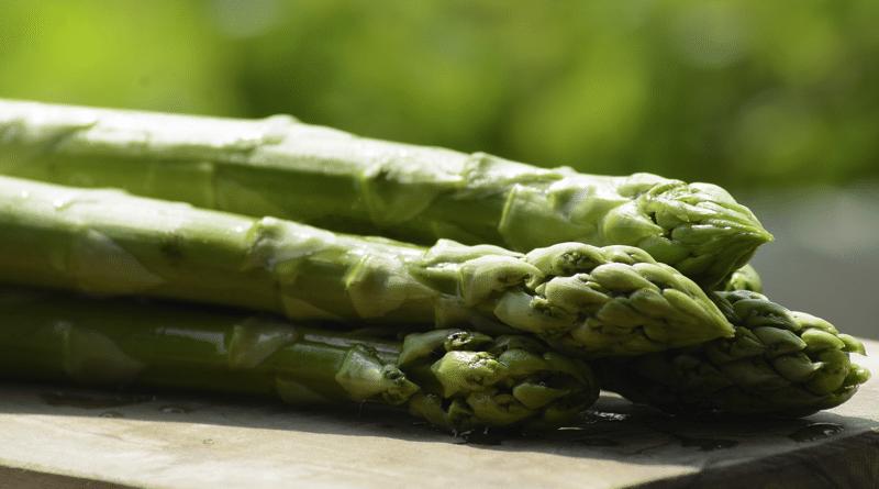 El Período de los Espárragos: Cómo Plantar y Cultivar Brotes