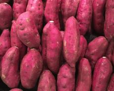 Patatas Americana: Cómo Plantar, Cultivar, Cuidar