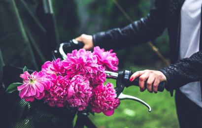 Peonía, Significado de las Flores y Precios de los Ramos