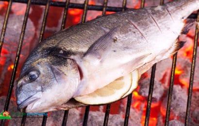 Pescado a la brasa: Cual es el más apropiado y como cocinarlo